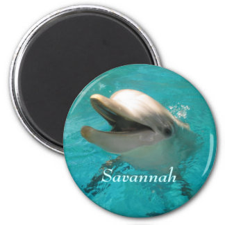 Smiling Dolphin Refrigerator Magnet