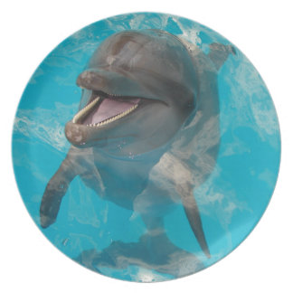 Smiling Dolphin Melamine Plate