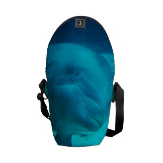 Smiling Dolphin Courier Bag