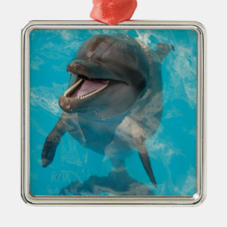 Smiling Dolphin Metal Ornament