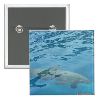 Smiling Dolphin Pinback Button