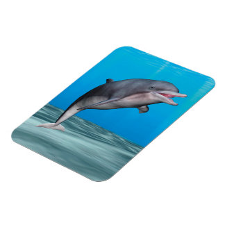 Smiling Dolphin Rectangle Magnets