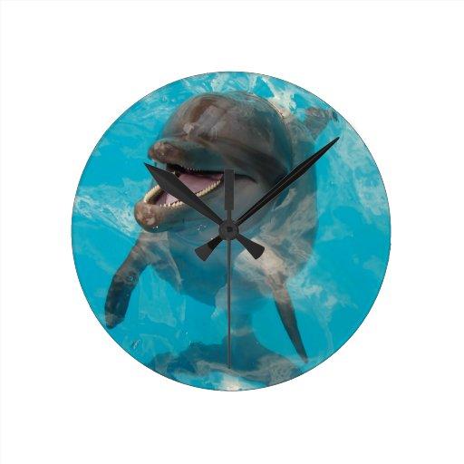 Smiling Dolphin Round Wallclock