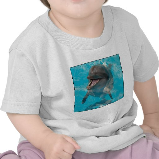 Smiling Dolphin Shirts