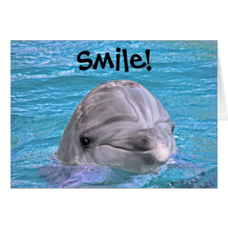 Smiling Dolphin - Smile! Greeting Card
