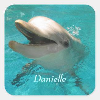 Smiling Dolphin Square Sticker