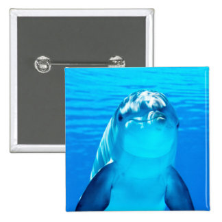 Smiling Dolphin Underwater Sea Life Button