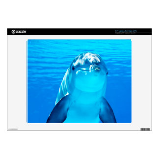Smiling Dolphin Underwater Sea Life Laptop Decals