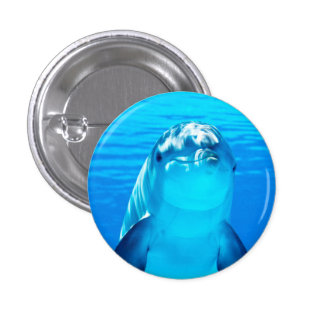 Smiling Dolphin Underwater Sea Life Pinback Button