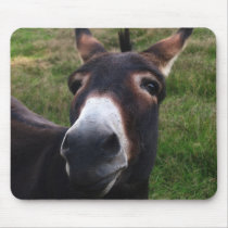 Smiling Donkey Mousepad