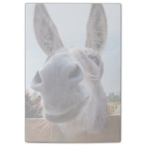 Smiling Donkey Post-It Notes