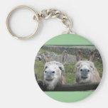 Smiling Donkeys! Keychain