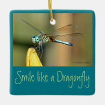 Smiling Dragonfly Ceramic Ornament