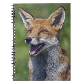 Smiling Fox Notebook