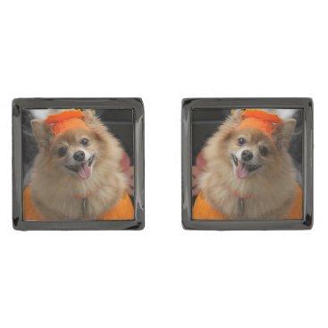 Halloween Themed Smiling Foxy Pomeranian Puppy in Pumpkin Halloween Cufflinks
