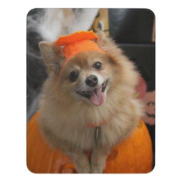 Halloween Themed Smiling Foxy Pomeranian Puppy in Pumpkin Halloween Door Sign