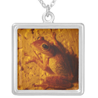 Smiling Frog, Necklace
