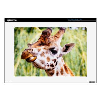 Smiling Giraffe, Animal Showing Its Teeth Skins For Laptops