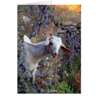 Smiling goat card