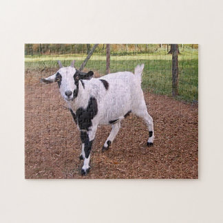 Smiling Goat Puzzle