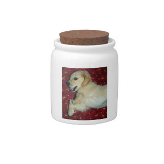 Smiling Golden Retriever Puppy Candy Dish