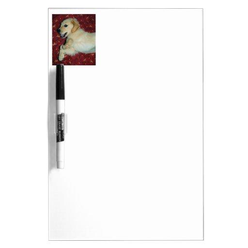 Smiling Golden Retriever Puppy Dry Erase Whiteboards