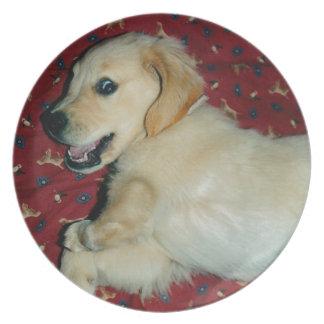 Smiling Golden Retriever Puppy Plate
