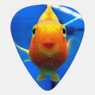 Smiling Goldfish Guitar Pick