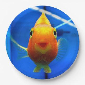 Smiling Goldfish Paper Plates