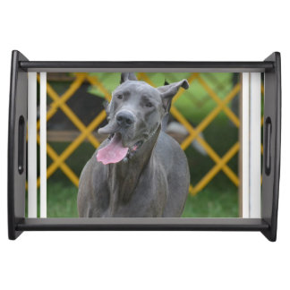 Smiling Great Dane Serving Trays