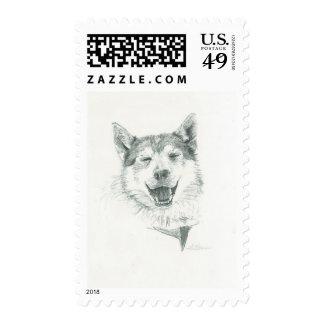 Smiling Happy Husky Postage