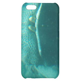 Smiling Hippo iPhone 4 Case