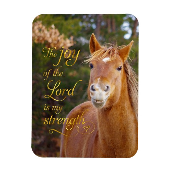 Smiling Horse Bible Quote Photo Magnet