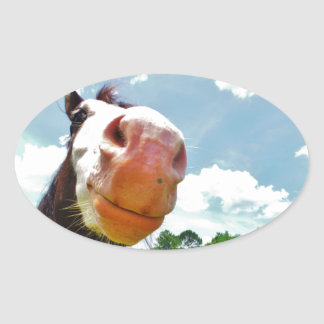 Smiling Horse Oval Sticker