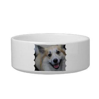 Smiling Icelandic Sheepdog Pet Bowl