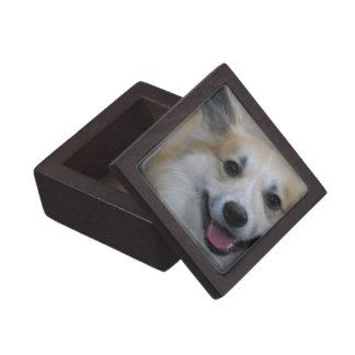Smiling Icelandic Sheepdog Premium Gift Box