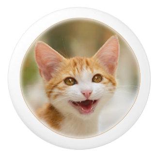 Smiling kitten funny cat meow ceramic knob