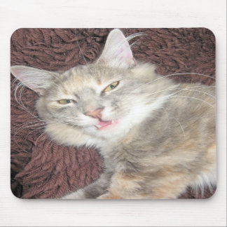 smiling kitty mousepad