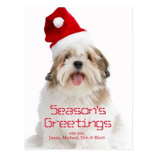 Smiling Lhasa Apso Dog Wearing Santa Hat Postcard