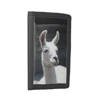 Smiling Llama Trifold Wallet