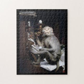 Smiling Monkey Puzzle