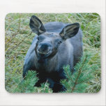 Smiling Moose Mouse Pad