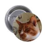 Smiling Nutmeg. Pinback Buttons