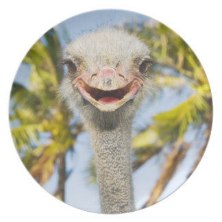 Smiling Ostrich Melamine Plate