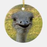 Smiling Ostrich Ornament