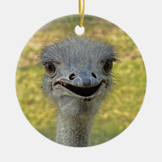 Smiling Ostrich Ornament