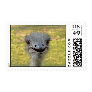 Smiling Ostrich Postage