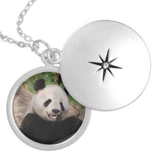 Smiling Panda Bear Round Locket Necklace