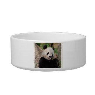 Smiling Panda Bear Pet Food Bowls
