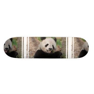 Smiling Panda Bear Skateboard Deck